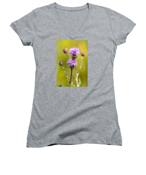 Women's V-Neck T-Shirt (Junior Cut) featuring the photograph Bumblebee Aug 2015 by Leif Sohlman