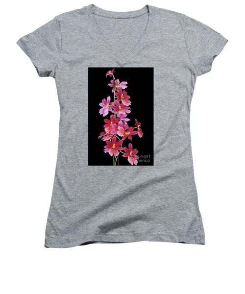 Burrageara Nelly Isler, Swiss Beauty Women's V-Neck T-Shirt