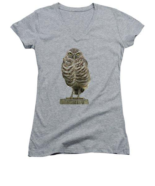 Burrowing Owl Lookout Women's V-Neck T-Shirt
