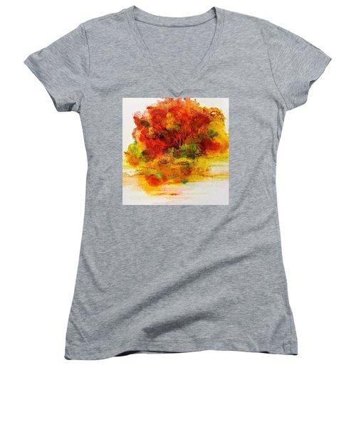 Burst Of Nature IIi Women's V-Neck T-Shirt (Junior Cut) by Carolyn Rosenberger