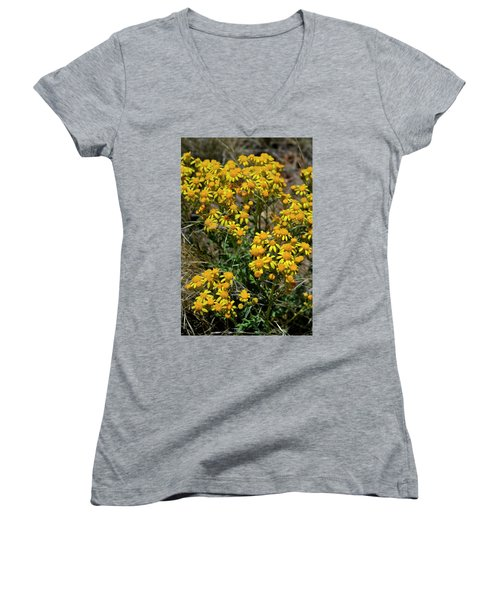 Burst Of Yellow Women's V-Neck