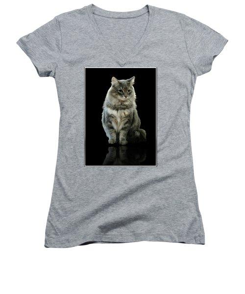 Bustopher Jones Women's V-Neck T-Shirt