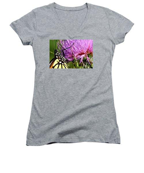 Butterfly On Bull Thistle Women's V-Neck