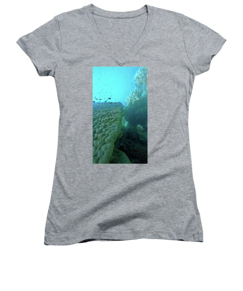 Women's V-Neck featuring the photograph Butterfly Fish  by Debbie Cundy