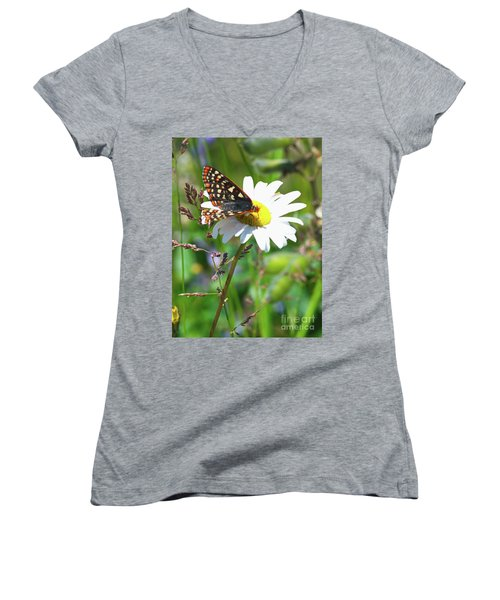 Butterfly On A Wild Daisy Women's V-Neck T-Shirt (Junior Cut) by Ansel Price