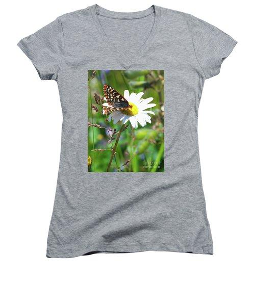 Butterfly On A Wild Daisy Women's V-Neck T-Shirt
