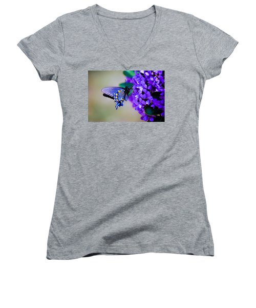 Butterfly On Mountain Laurel Women's V-Neck T-Shirt