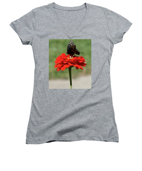 Butterfly On Red Zinnia Women's V-Neck (Athletic Fit)