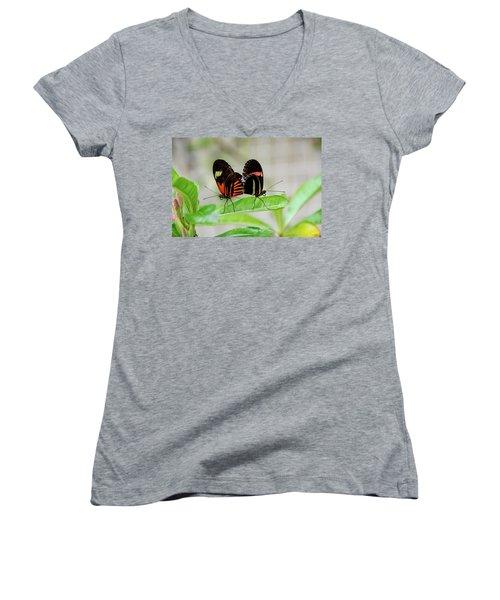Butterfly Pair Women's V-Neck