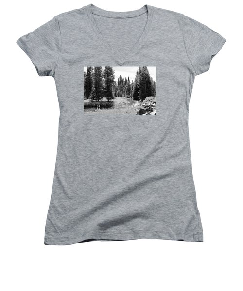 By The Stream Women's V-Neck T-Shirt (Junior Cut) by Christin Brodie