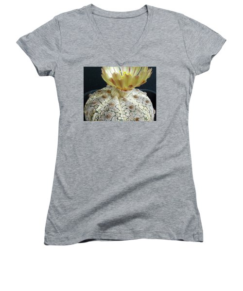 Cactus Flower 1 Women's V-Neck