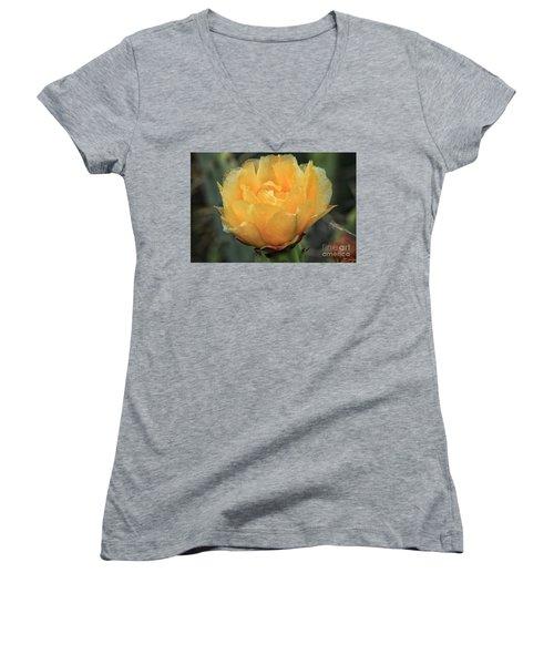 Cactus Flower 2016   Women's V-Neck T-Shirt (Junior Cut) by Toma Caul