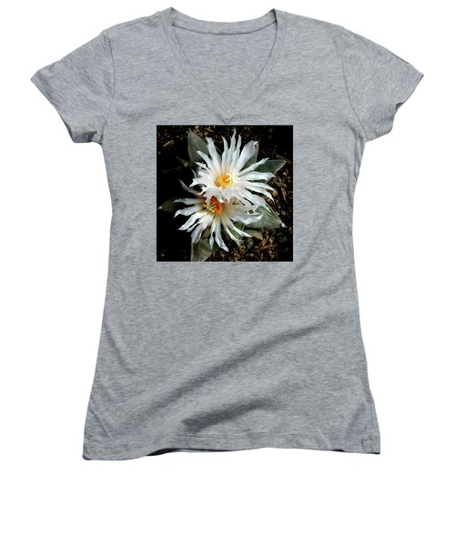 Cactus Flower 7 2 Women's V-Neck
