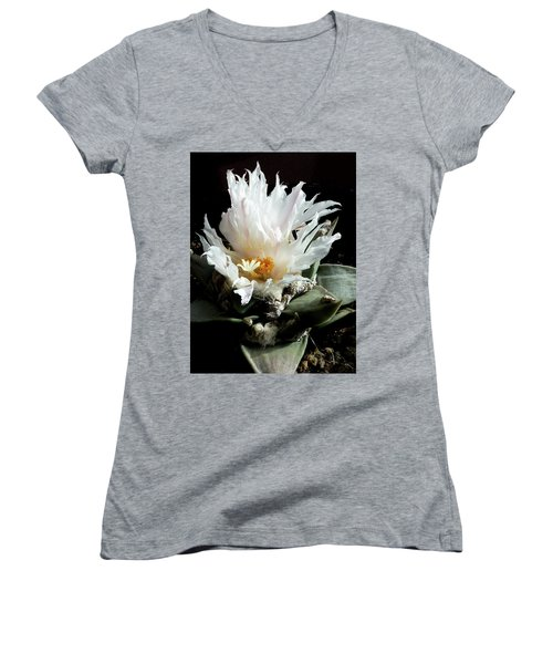 Cactus Flower 8 Women's V-Neck