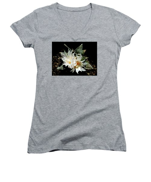 Cactus Flower 9 2 Women's V-Neck