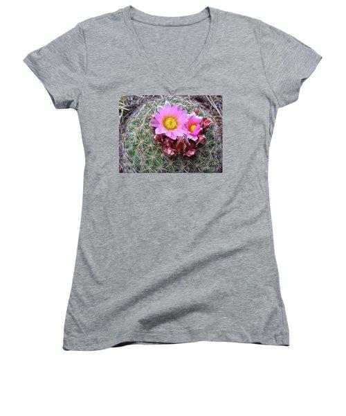 Cactus Flower  Women's V-Neck T-Shirt (Junior Cut) by Alan Johnson