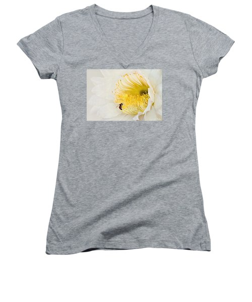 Women's V-Neck T-Shirt (Junior Cut) featuring the photograph Cactus Flower Diner No. 2 by Joe Bonita