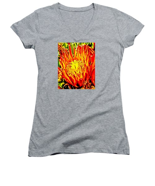 Cactus Flower Women's V-Neck T-Shirt (Junior Cut) by Judi Saunders