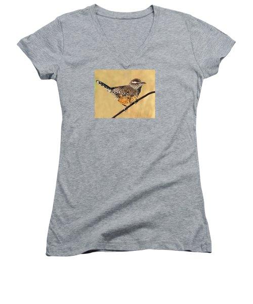 Cactus Wren Women's V-Neck T-Shirt (Junior Cut) by Tony Beck