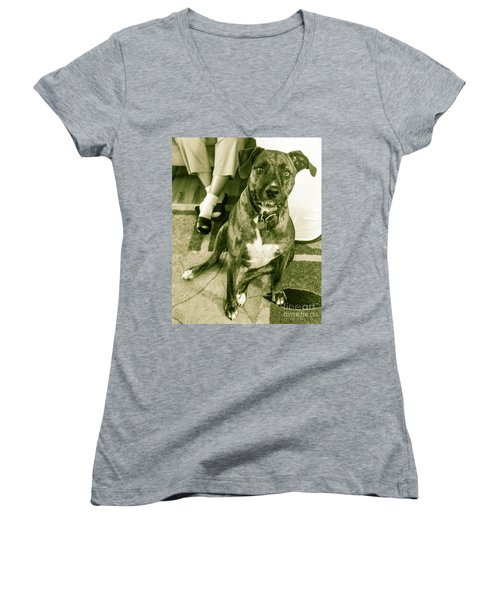 Women's V-Neck T-Shirt (Junior Cut) featuring the photograph Caeser 6 by Robin Coaker