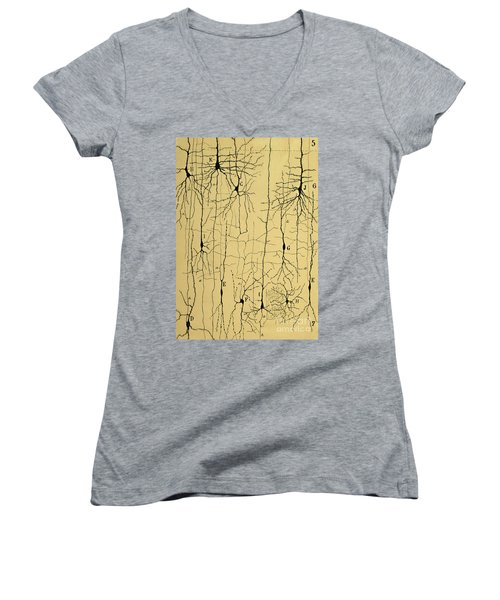 Cajal Drawing Of Microscopic Structure Of The Brain 1904 Women's V-Neck T-Shirt (Junior Cut)