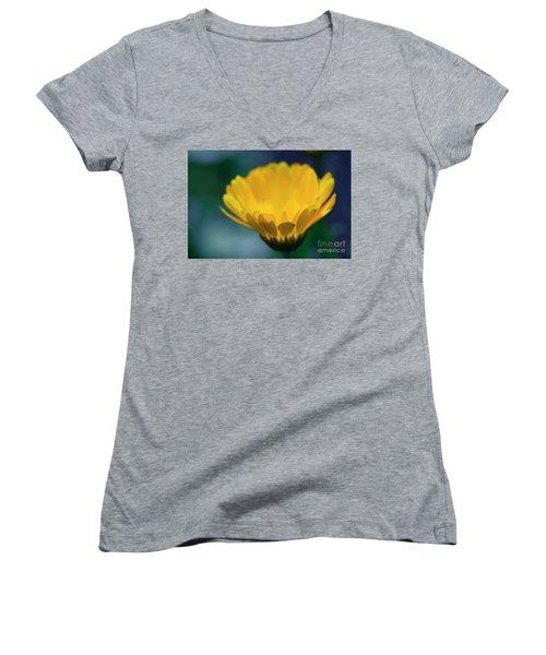 Women's V-Neck T-Shirt (Junior Cut) featuring the photograph Calendula by Sharon Mau