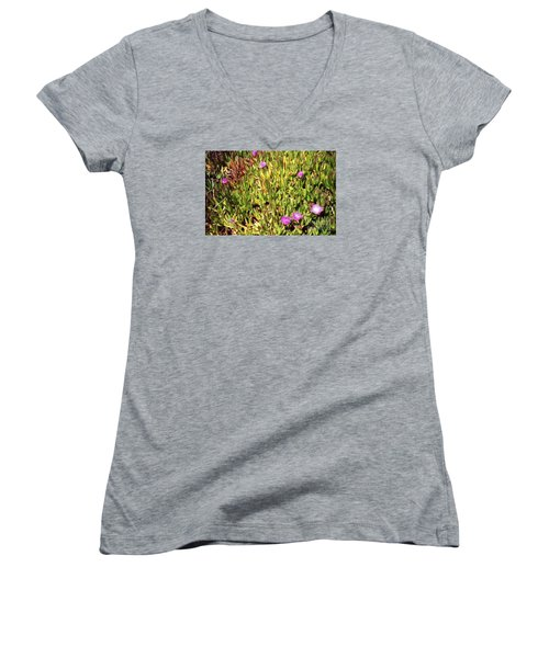 California Coast Ice Plant Women's V-Neck T-Shirt