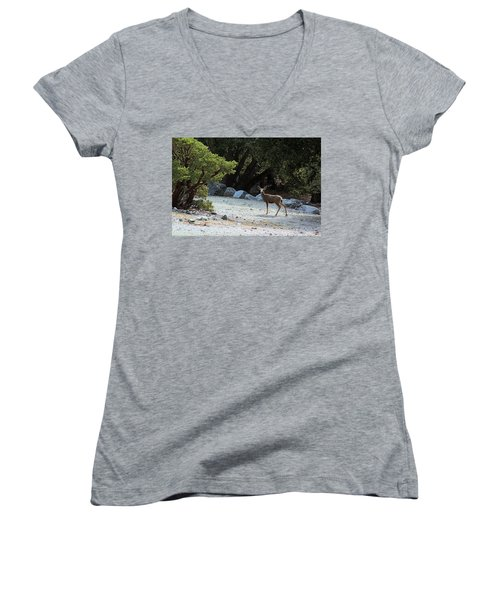 California Mule Deer Women's V-Neck T-Shirt