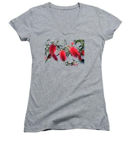 Callistemon - Bottle Brush T-shirt 3 Women's V-Neck T-Shirt (Junior Cut) by Isam Awad