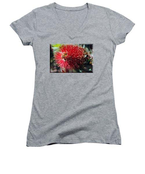 Callistemon - Bottle Brush T-shirt 5 Women's V-Neck (Athletic Fit)