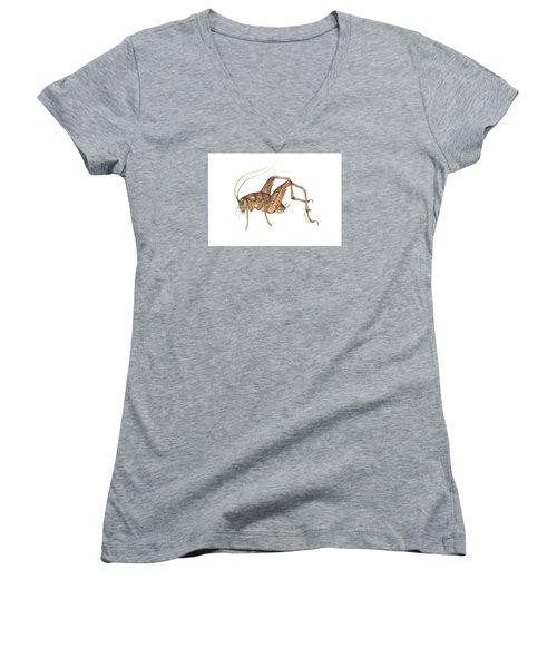 Camel Cricket Women's V-Neck T-Shirt (Junior Cut) by Cindy Hitchcock