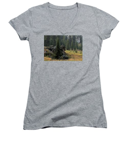 Campground Springs Women's V-Neck T-Shirt