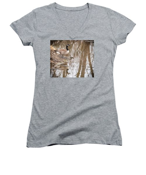 Canada Geese Reflection Women's V-Neck T-Shirt (Junior Cut) by Edward Peterson