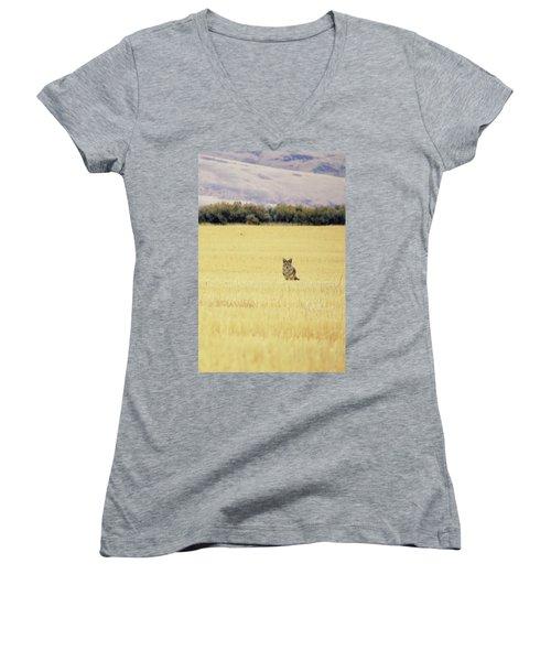 Canidae Women's V-Neck T-Shirt
