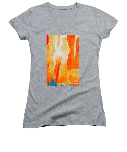 Canyon Women's V-Neck T-Shirt (Junior Cut) by William Wyckoff