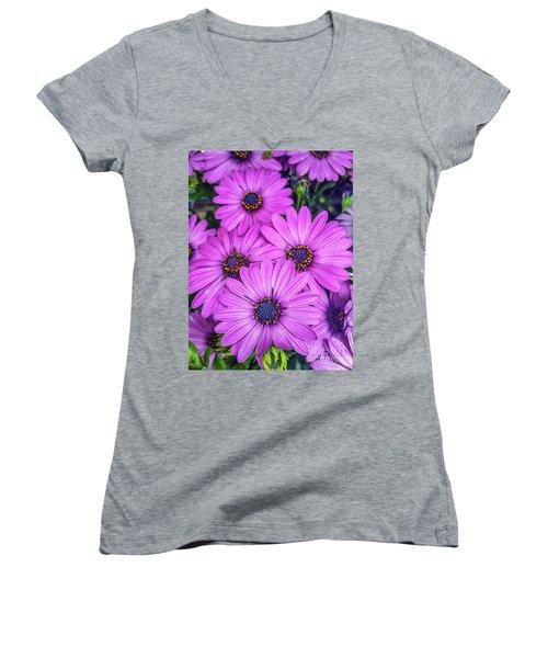 Cape Daisys - Purple Women's V-Neck (Athletic Fit)
