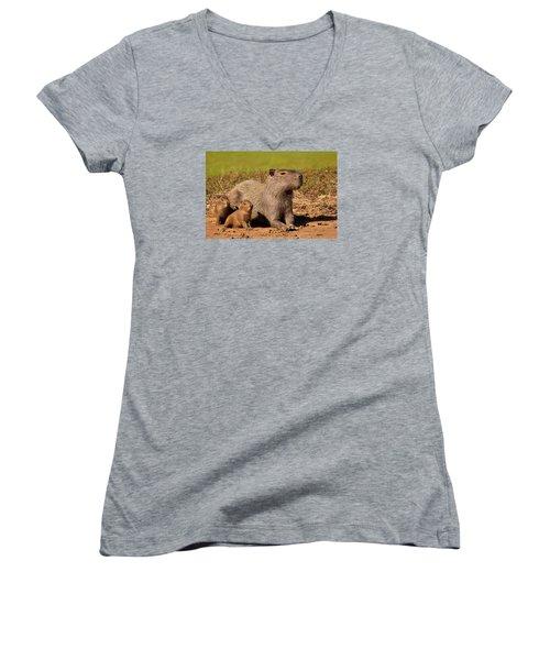 Capybara Family Enjoying Sunset Women's V-Neck (Athletic Fit)