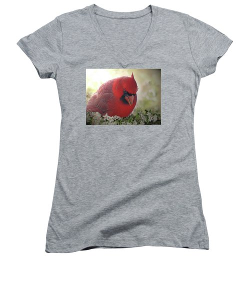 Women's V-Neck T-Shirt (Junior Cut) featuring the photograph Cardinal In Flowers by Debbie Portwood