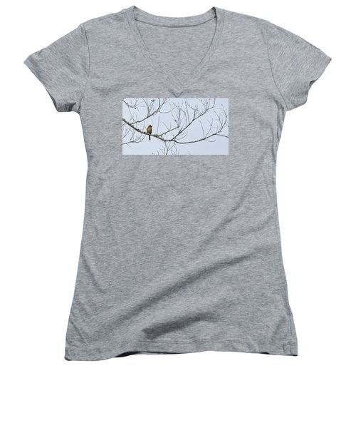 Women's V-Neck T-Shirt (Junior Cut) featuring the photograph Cardinal In Tree by Richard Rizzo