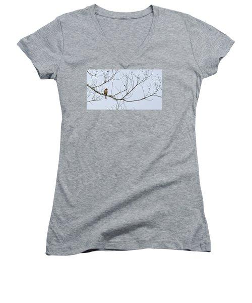 Cardinal In Tree Women's V-Neck T-Shirt (Junior Cut) by Richard Rizzo