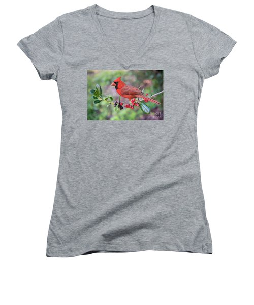 Cardinal On Holly Branch Women's V-Neck T-Shirt