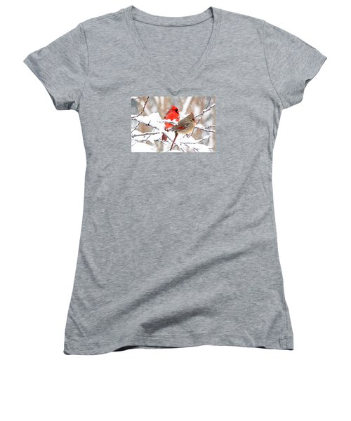 Cardinals In The Winter Women's V-Neck