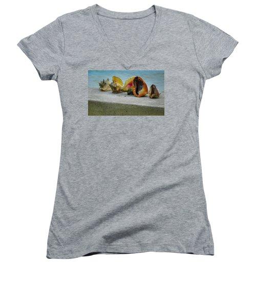 Caribbean Charisma Women's V-Neck T-Shirt (Junior Cut) by Karen Wiles