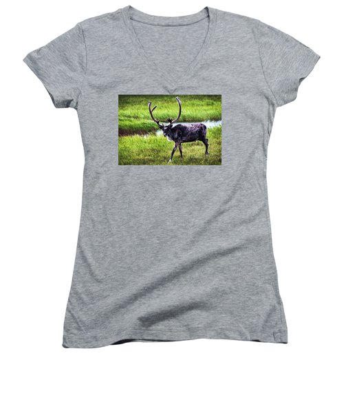 Women's V-Neck T-Shirt (Junior Cut) featuring the photograph Caribou by Anthony Jones