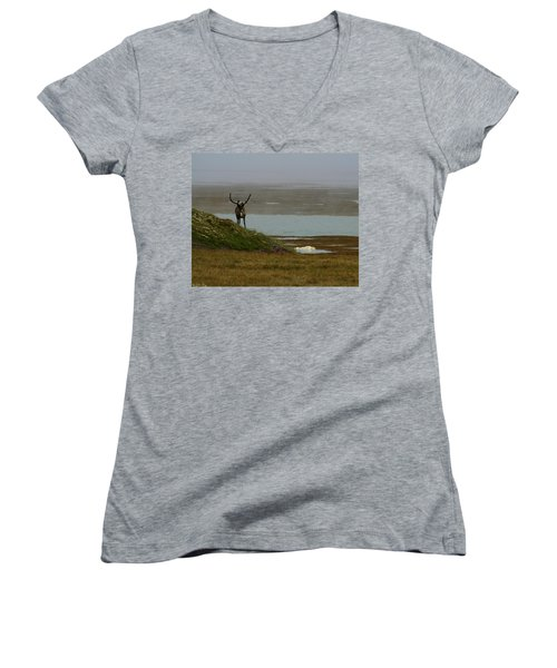 Caribou Fog Women's V-Neck T-Shirt (Junior Cut) by Anthony Jones