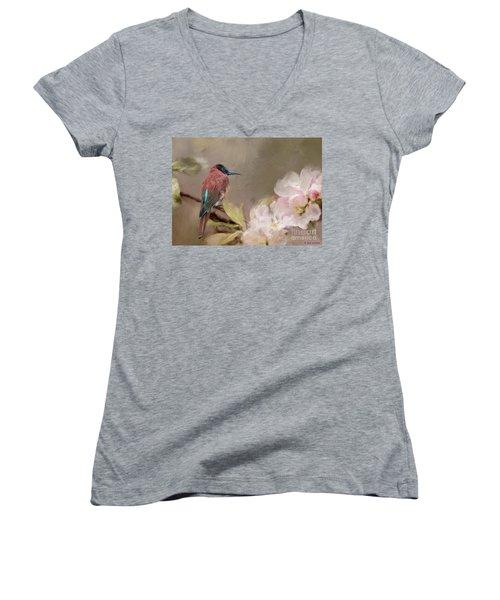 Carmine Bee-eater Women's V-Neck T-Shirt