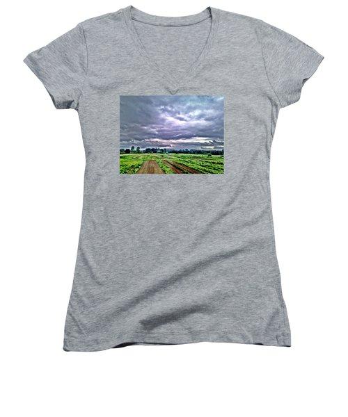 Carnation Women's V-Neck T-Shirt