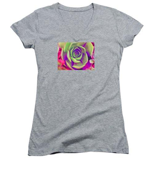 Carousel Women's V-Neck T-Shirt (Junior Cut) by Vivien Rhyan