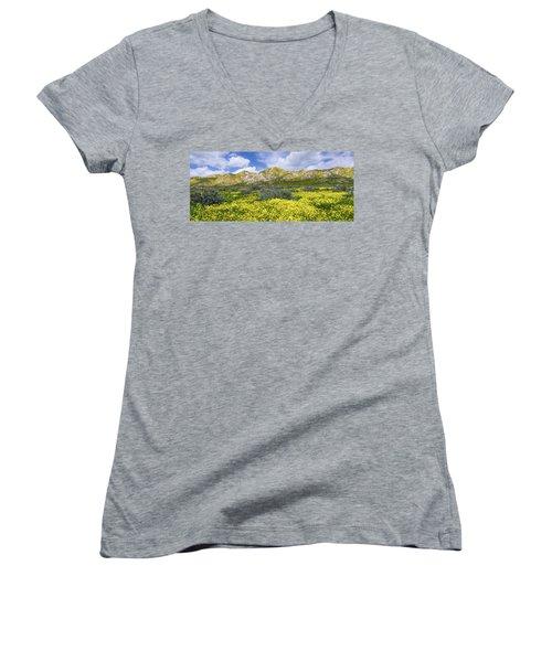 Carrizo Spring Women's V-Neck T-Shirt (Junior Cut)