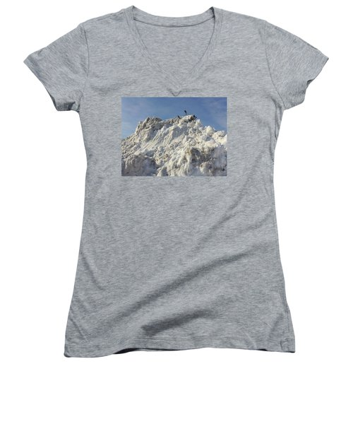 Cart Art No. 31 Women's V-Neck